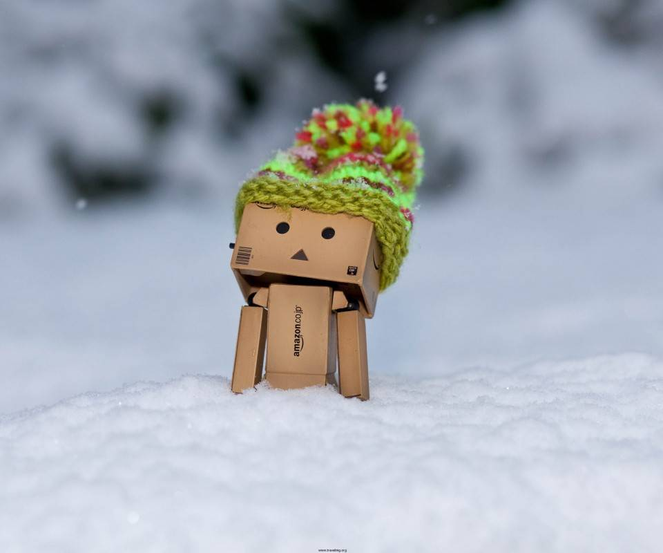 Danbo At The Snow