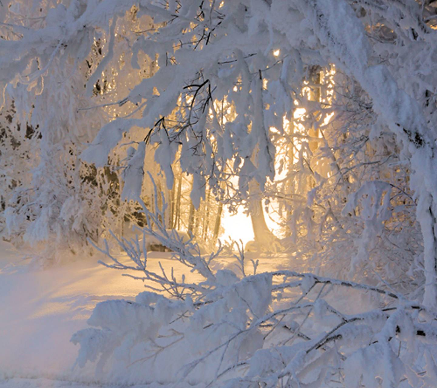Winters Window