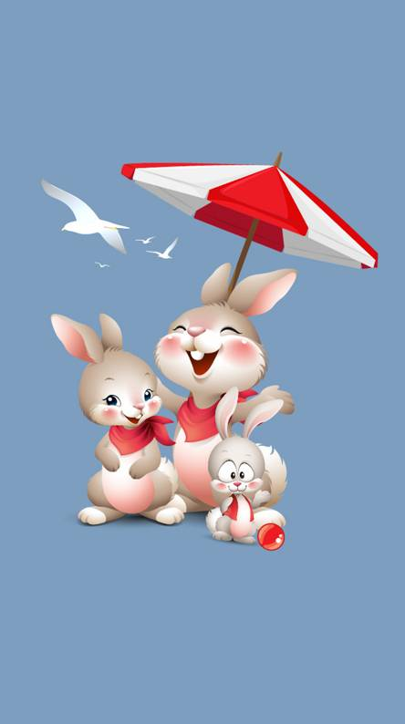 Rabbit family 3