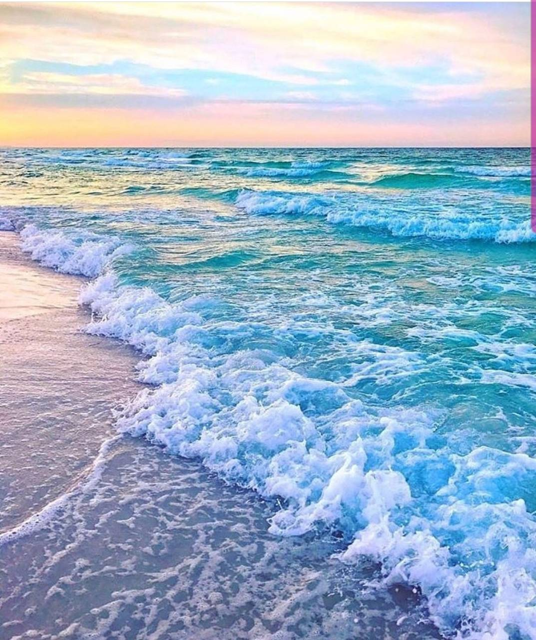 Pink Beach Paradise