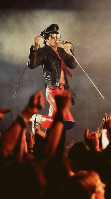 Freddie Mercury Wallpaper Iphone New Wallpapers
