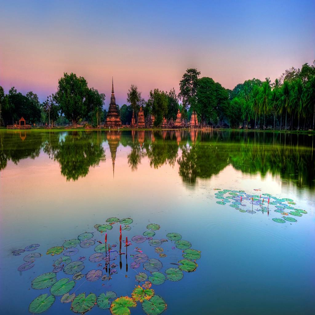 Reflected Nature