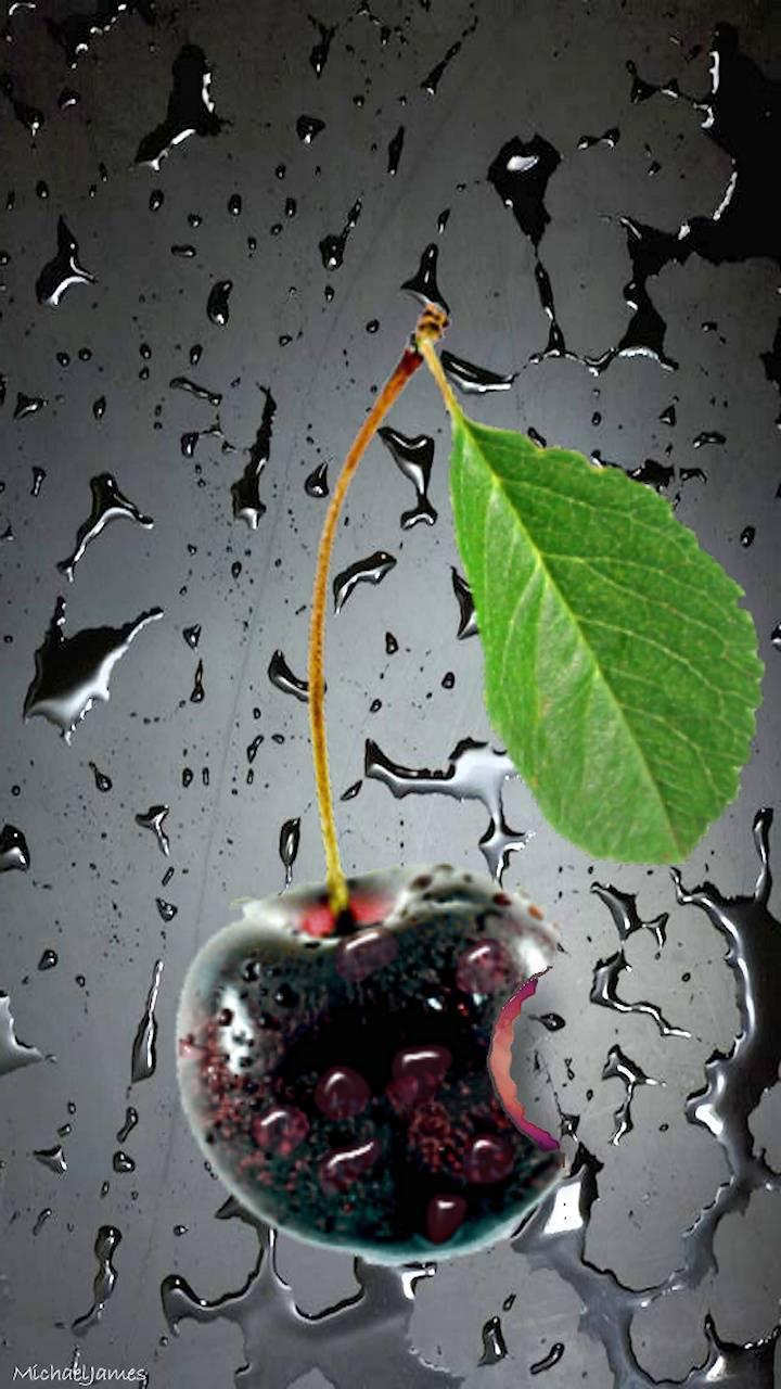 Black Cherry Logo