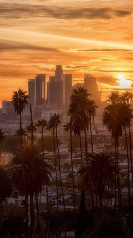 Los Angeles Wallpapers Free By Zedge