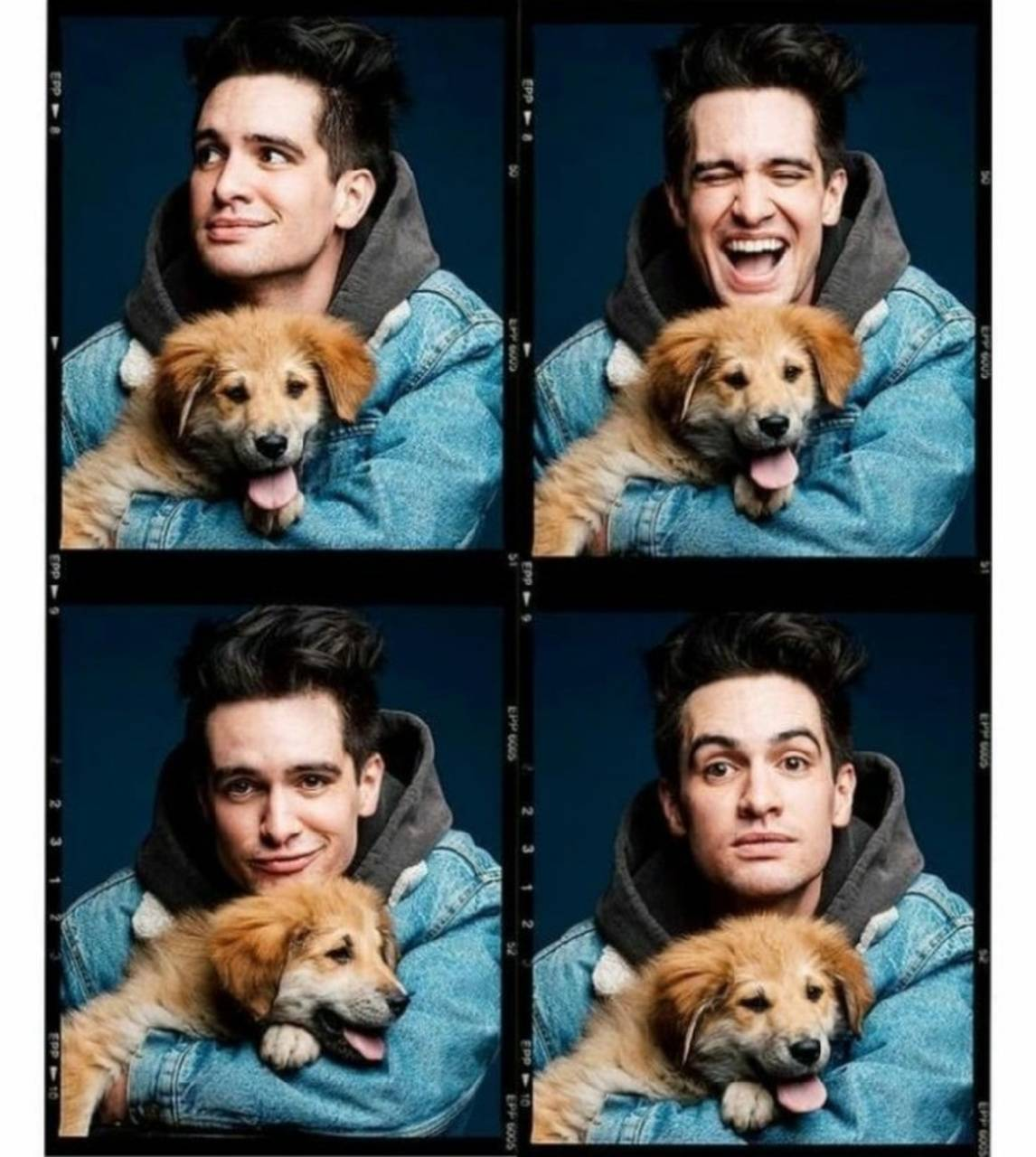 Beebo and a pupper