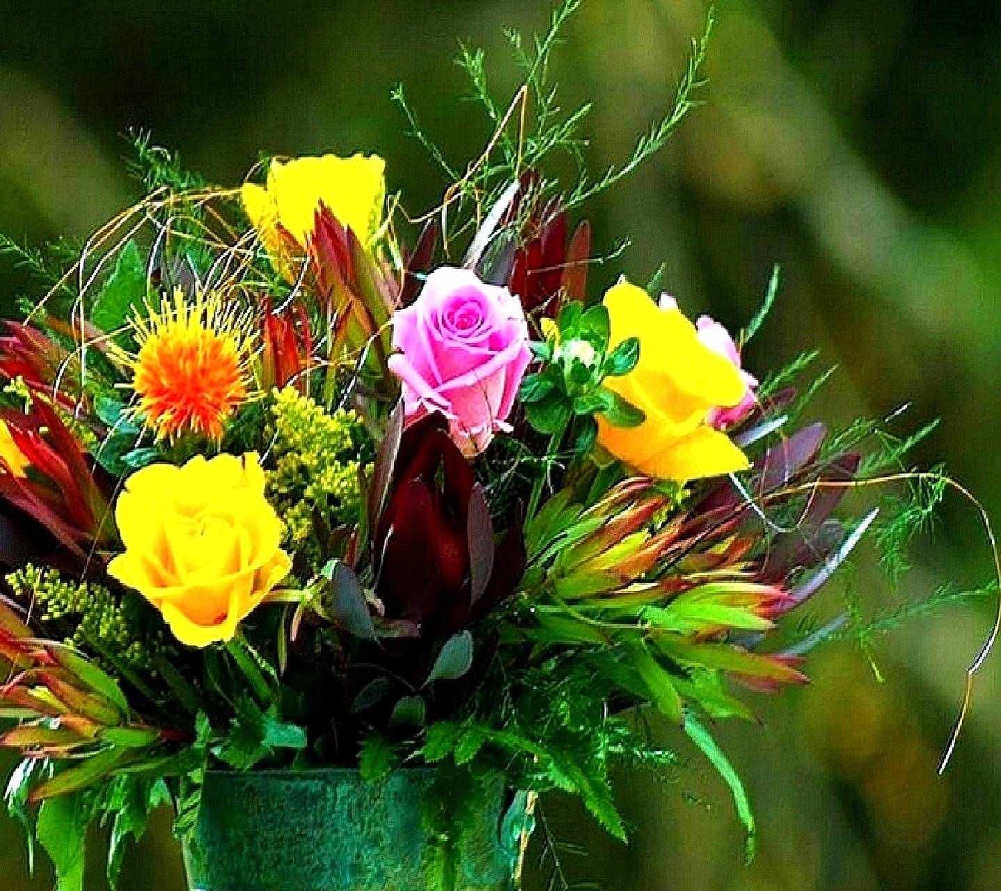 flowers-----------
