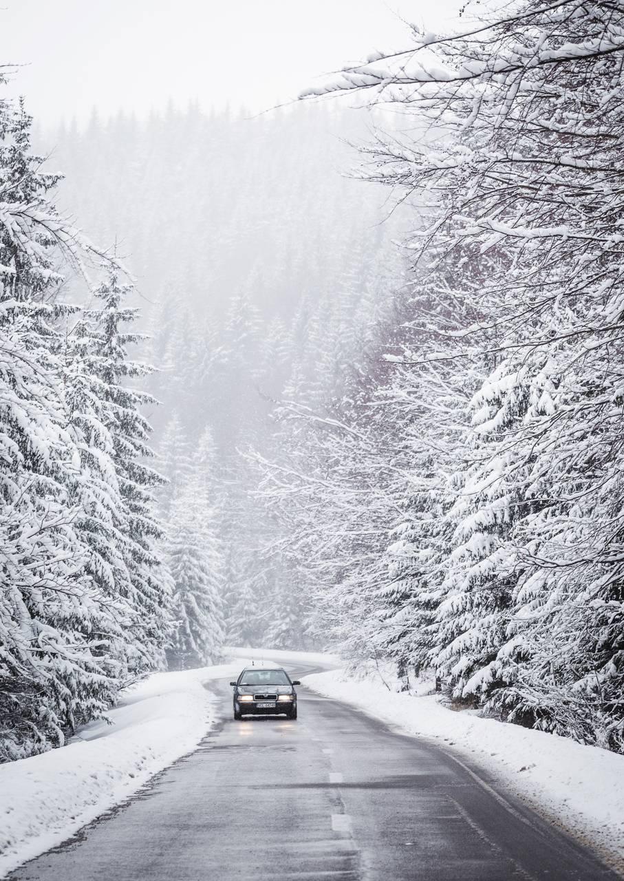 Winter in Bukovina