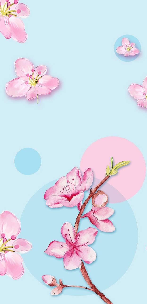 Blossom Bubbles