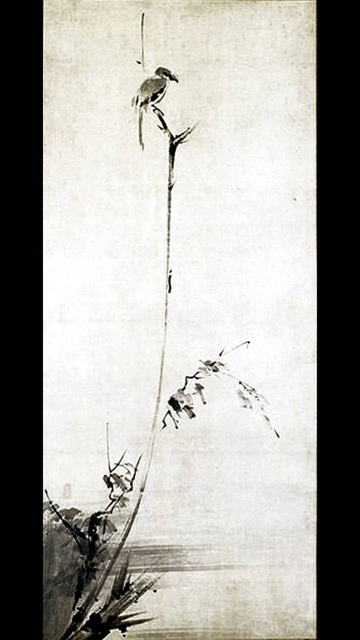 Shrike on a Branch