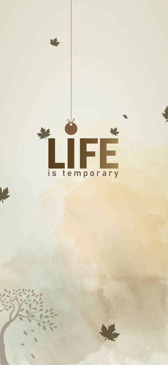Life is Temporary