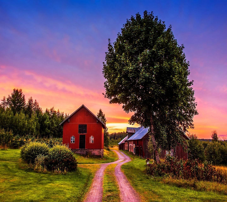 Sunset Tree Home