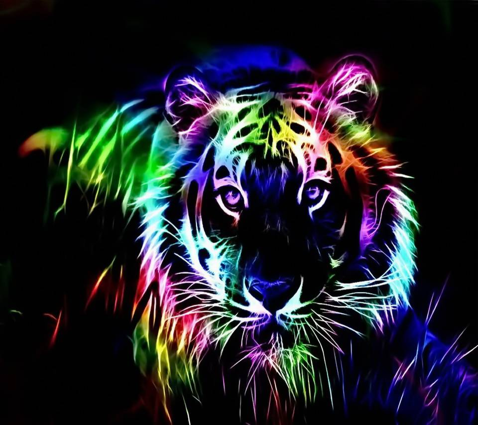 Colorful Tiger Hd Wallpaper by xlalitx - d1 - Free on ZEDGE™
