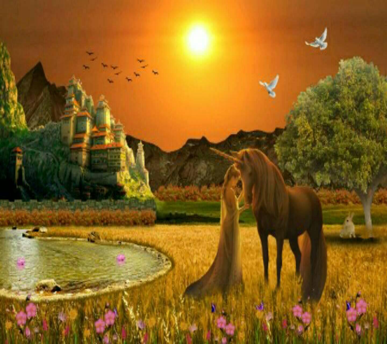 Evening image