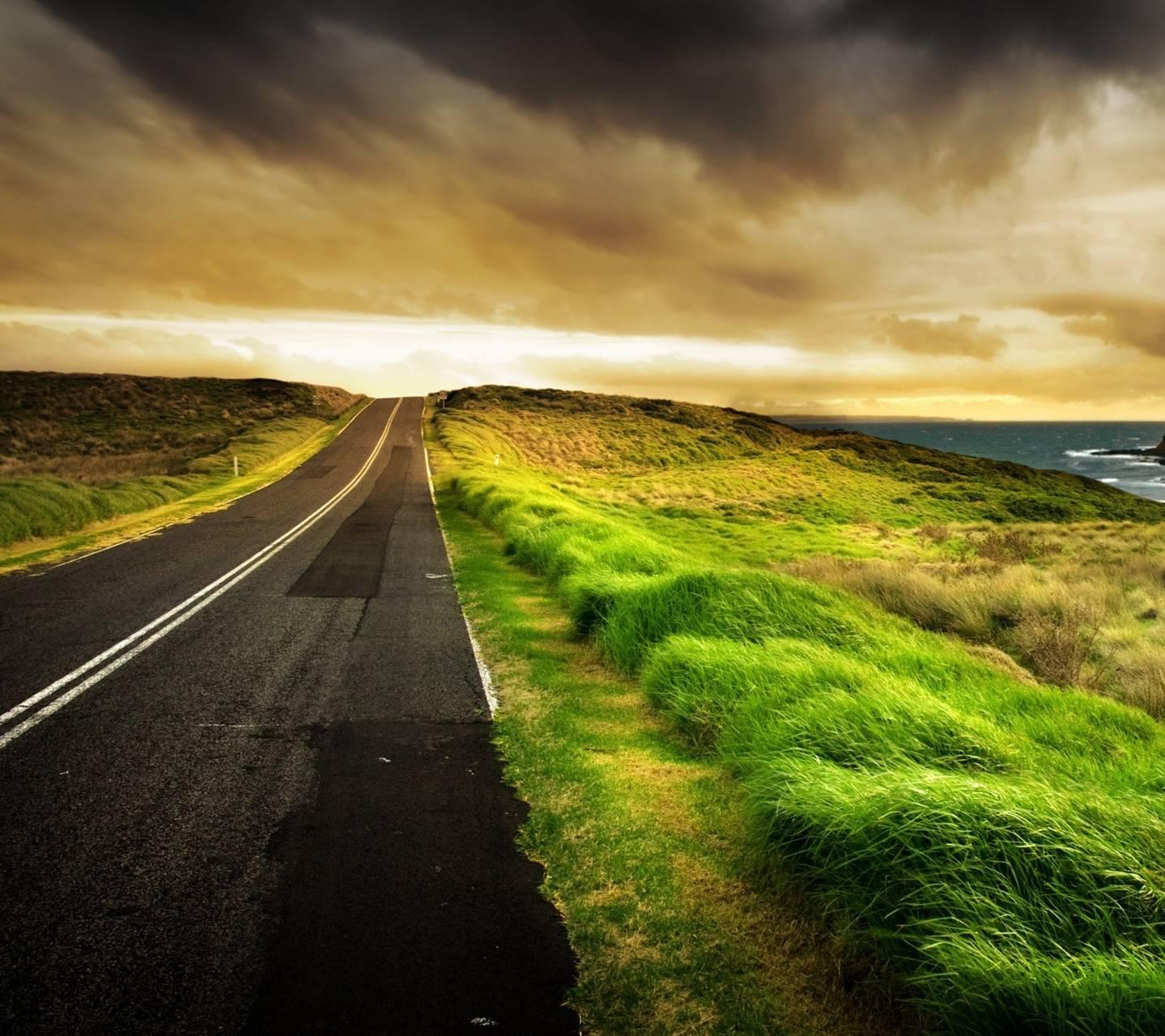 Nature Road4