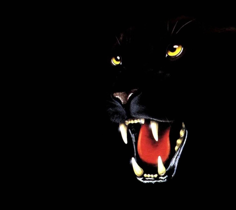 Black Panther Hd