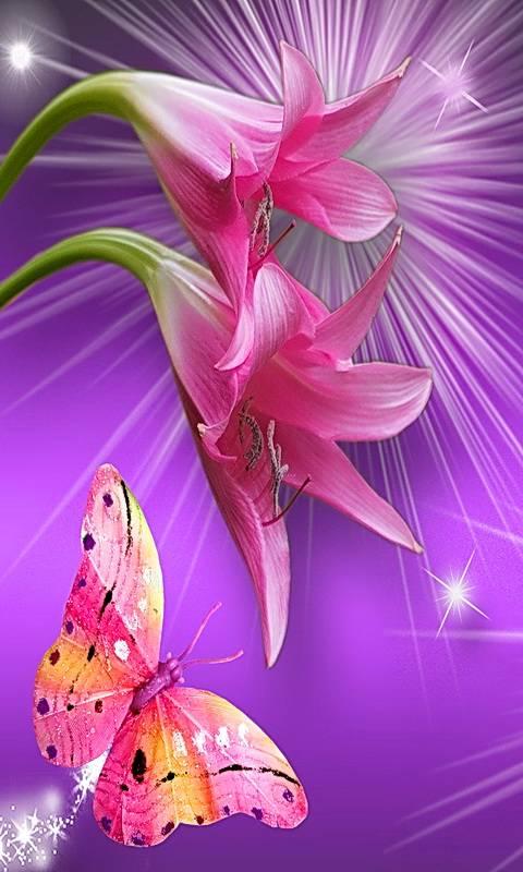 Pink On Purple