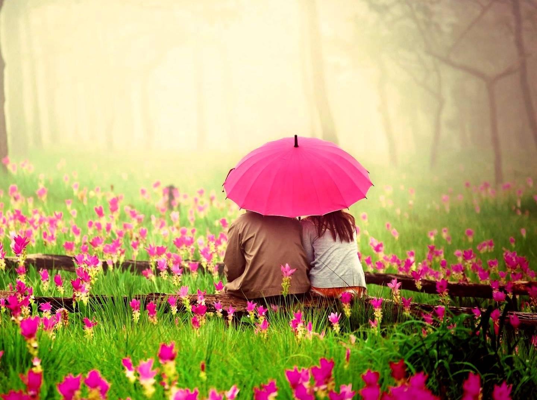 love-------------