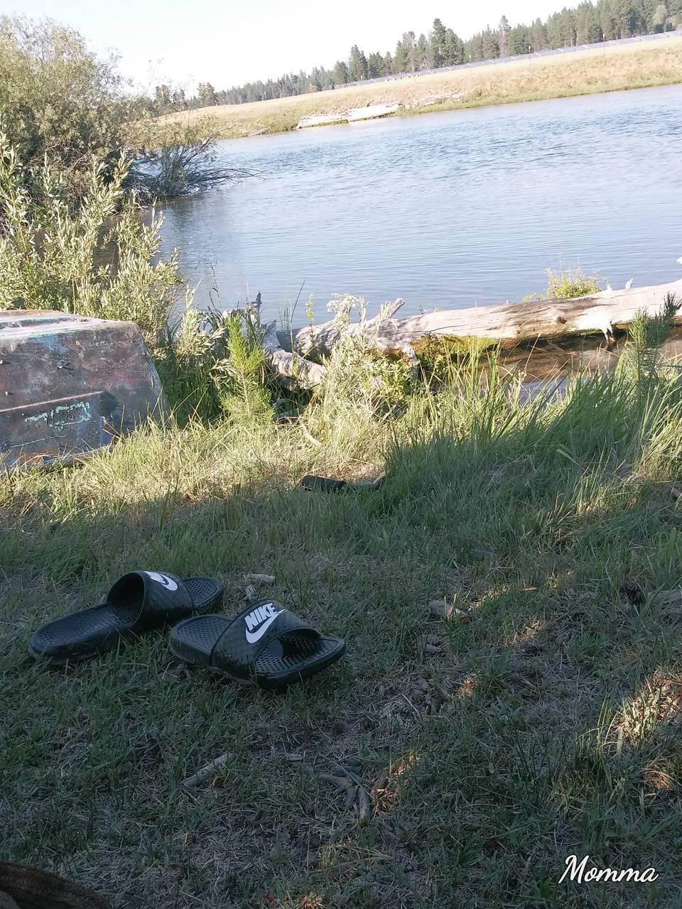 Shoes shoe