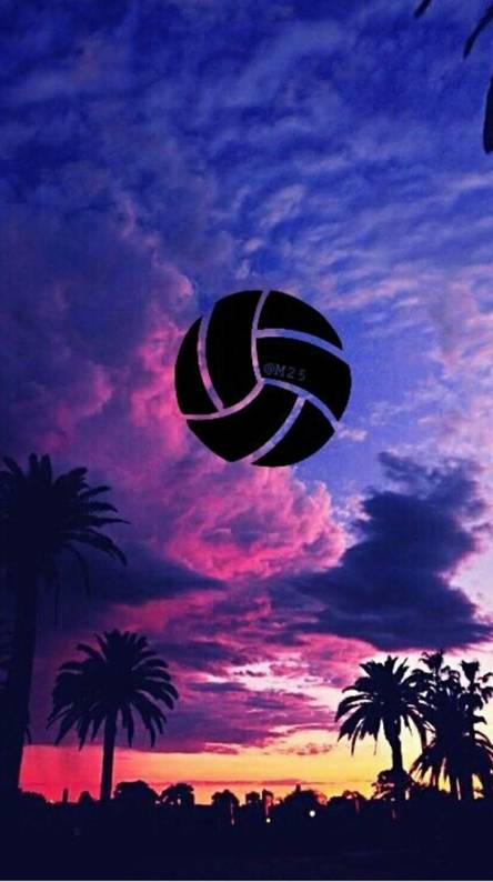 Volleyball Ringtones And Wallpapers Free By Zedge