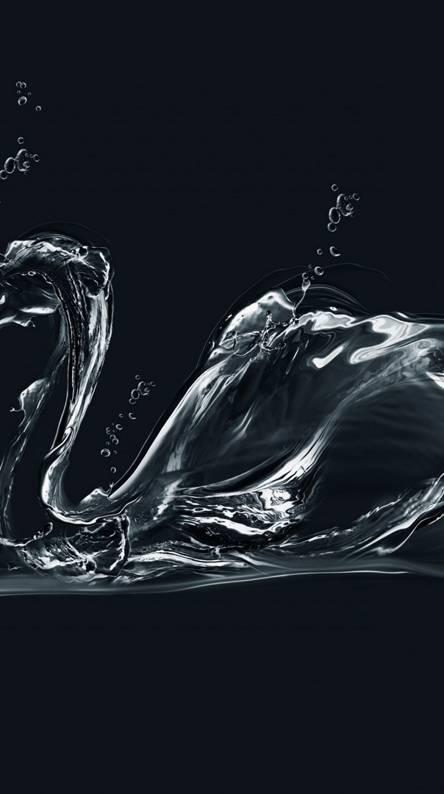 Water Swan