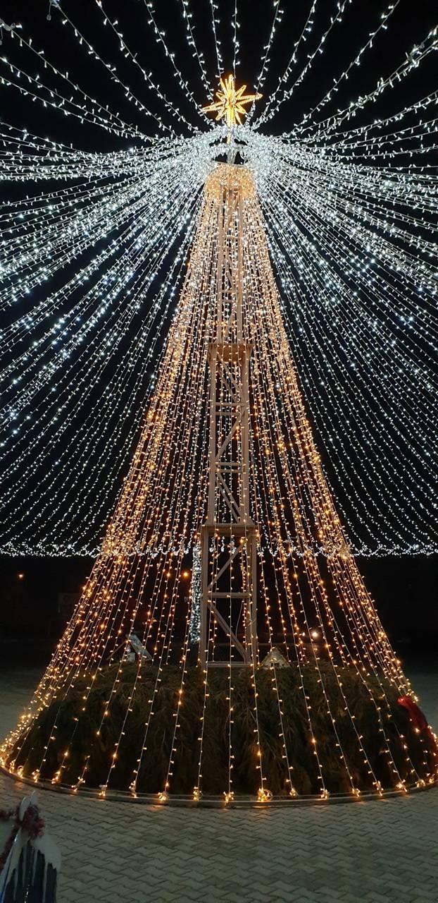 Fir Lights