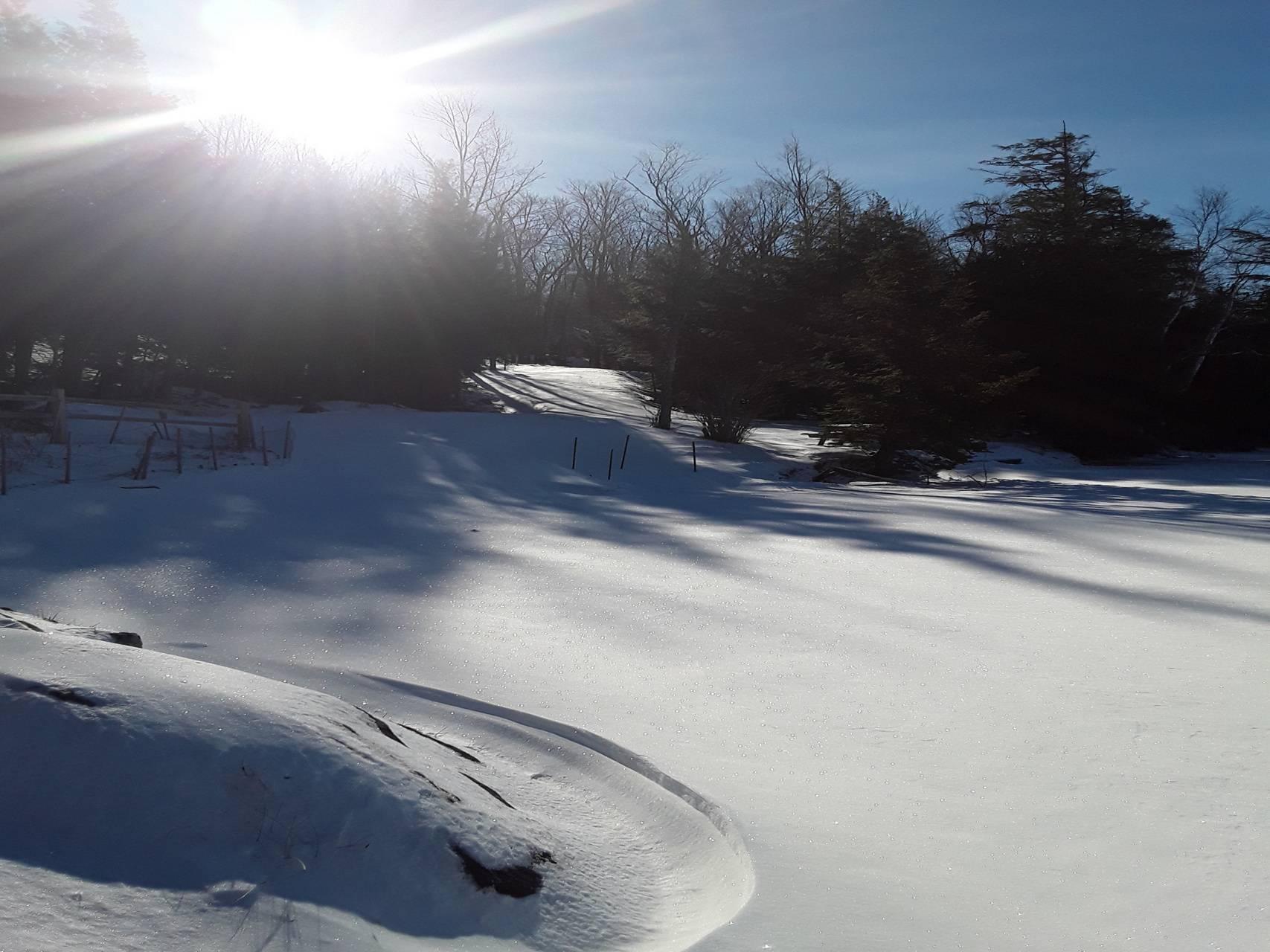 Winter VT
