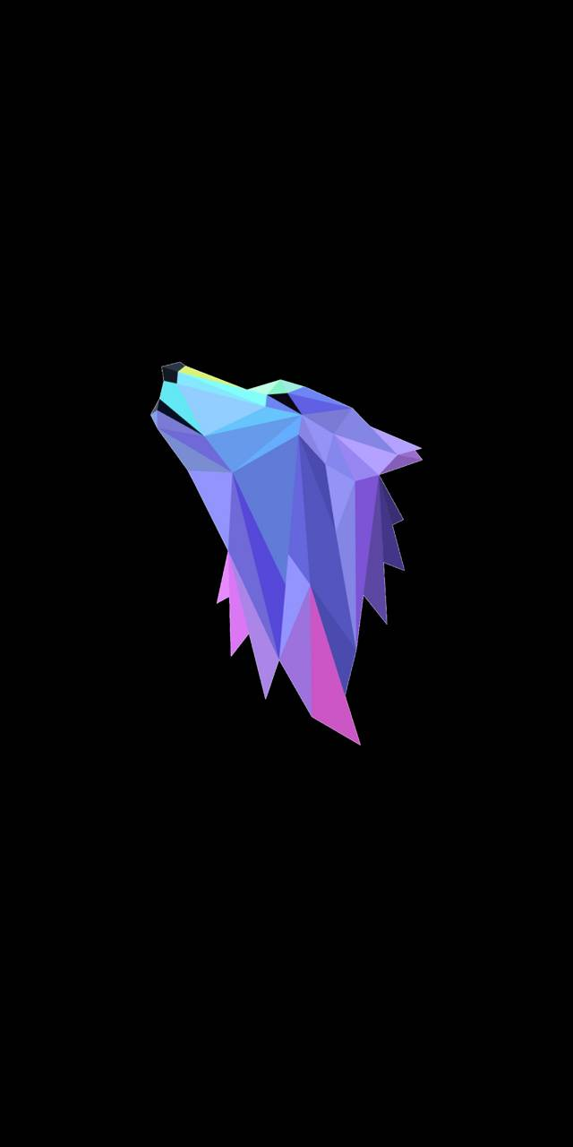 Wolf Polygon Wallpaper By Samiul Zayn B5 Free On Zedge