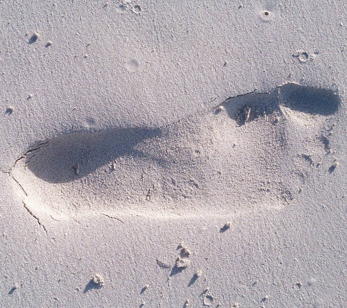 a foot on the sand