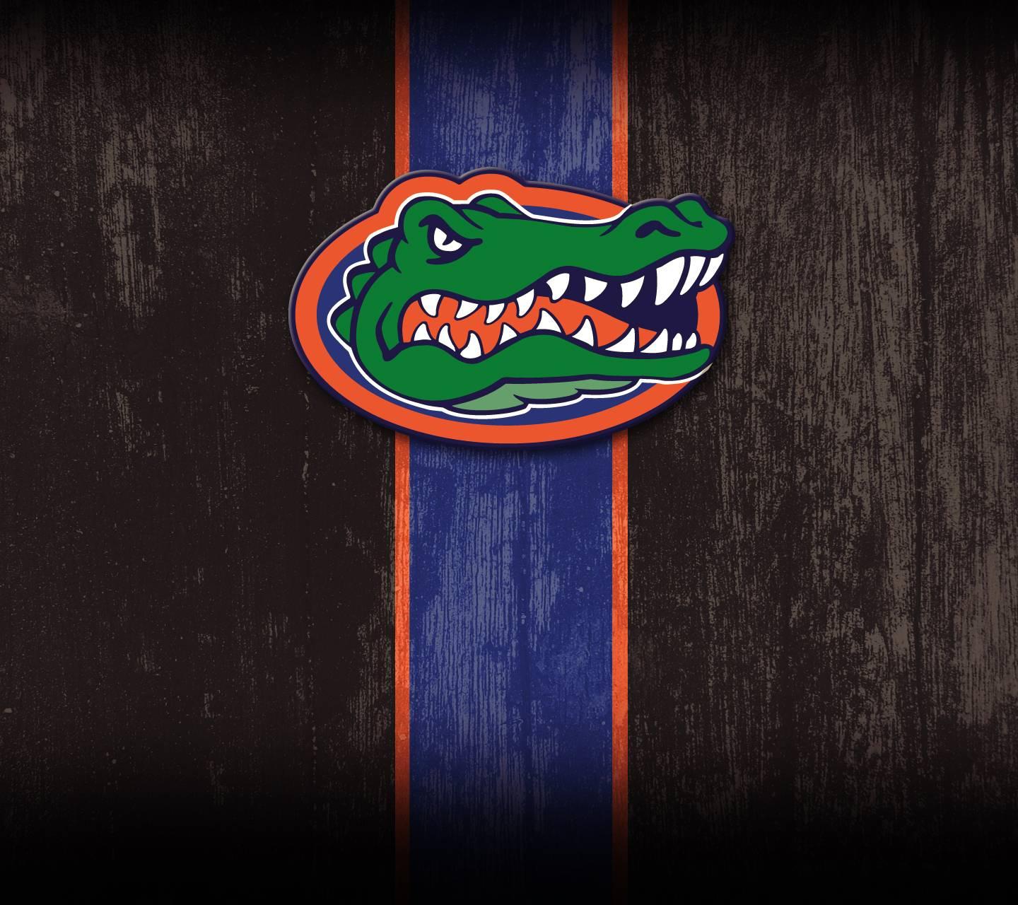 Florida Gators Wallpaper By Spfan3000 F7 Free On Zedge