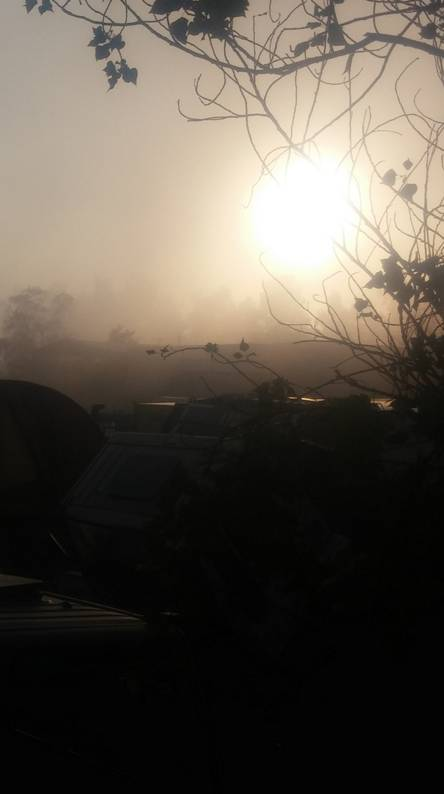 niebla fog