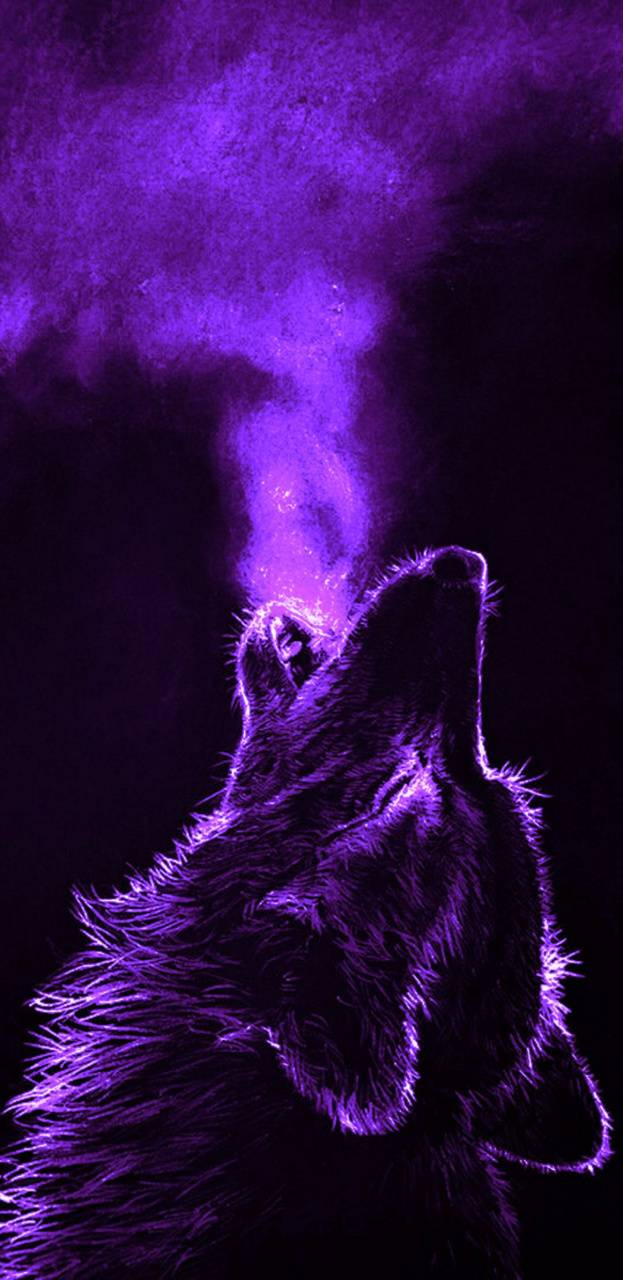 Purple Wolf Wallpaper By Thefooltommy 52 Free On Zedge