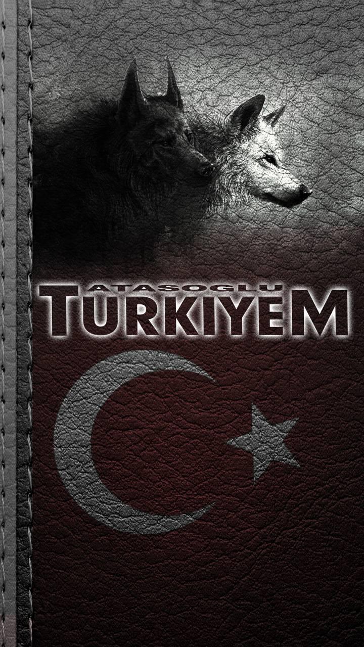 TURKIYE BOZKURT