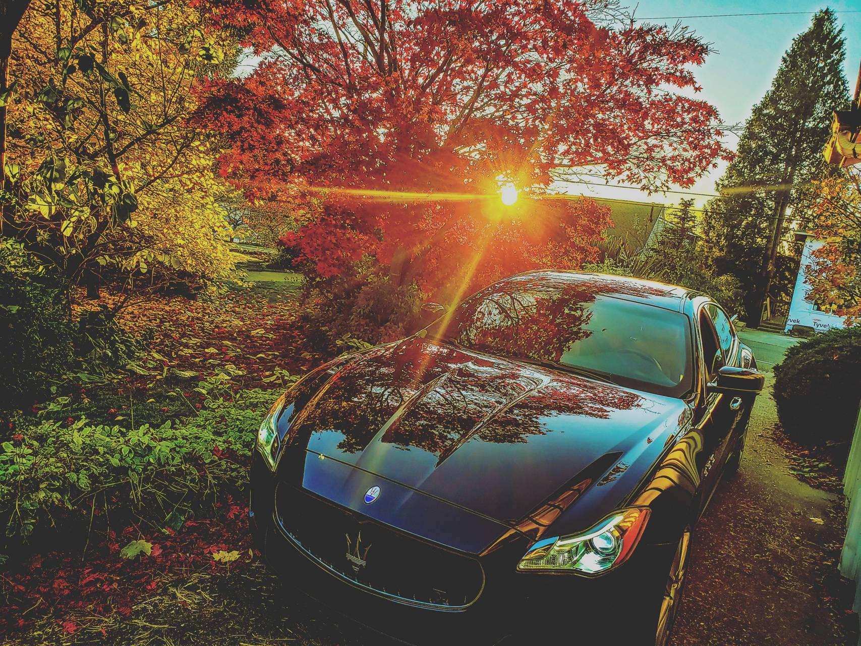 Autumn Maserati