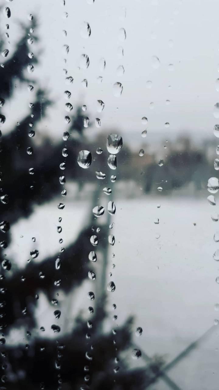 Raining drops 237