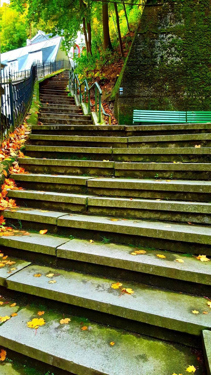 Nature and stairs