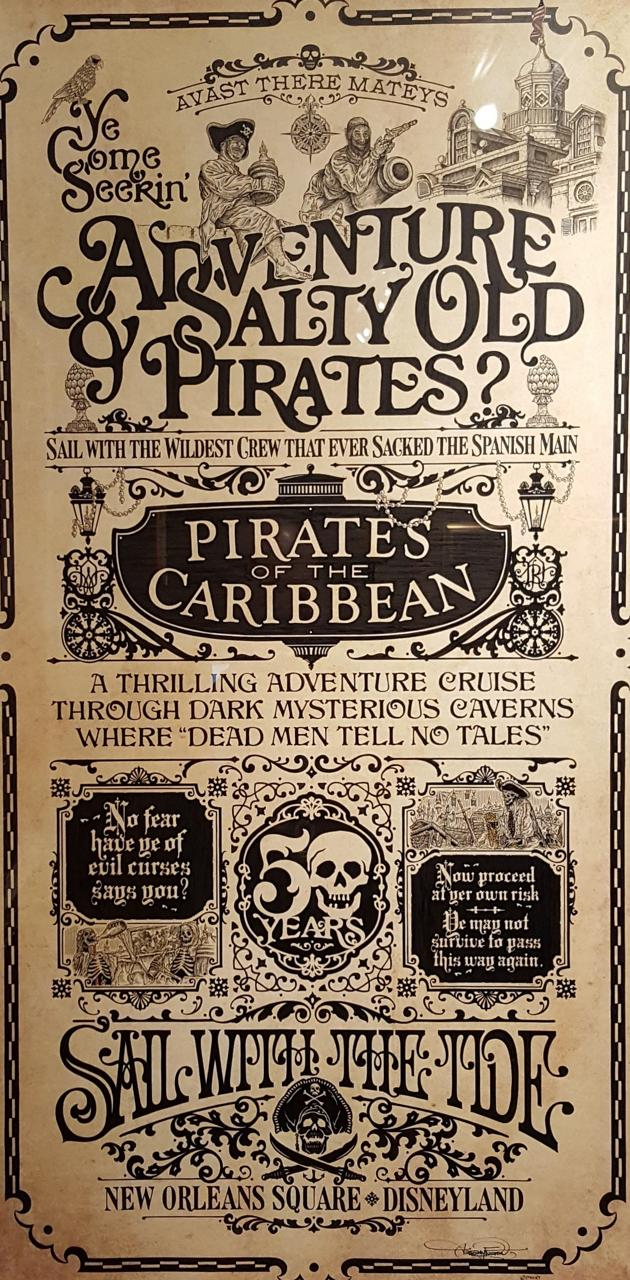 DL Pirates poster