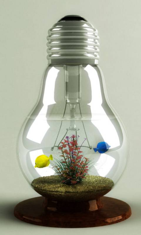 Fish Bulb