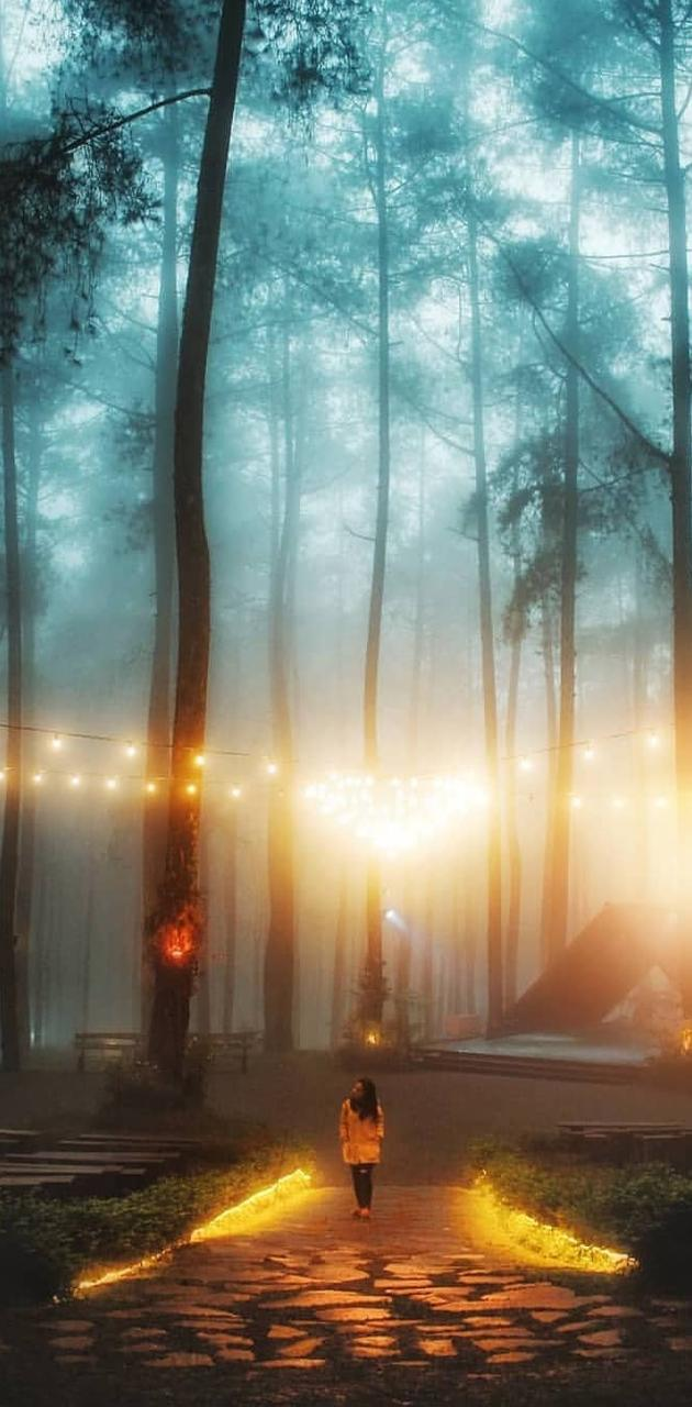 Beauty Nature Lamp