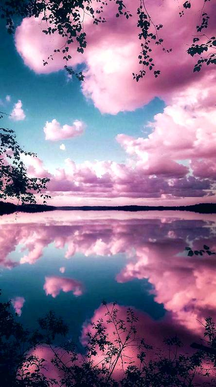 Reflecting pink sky