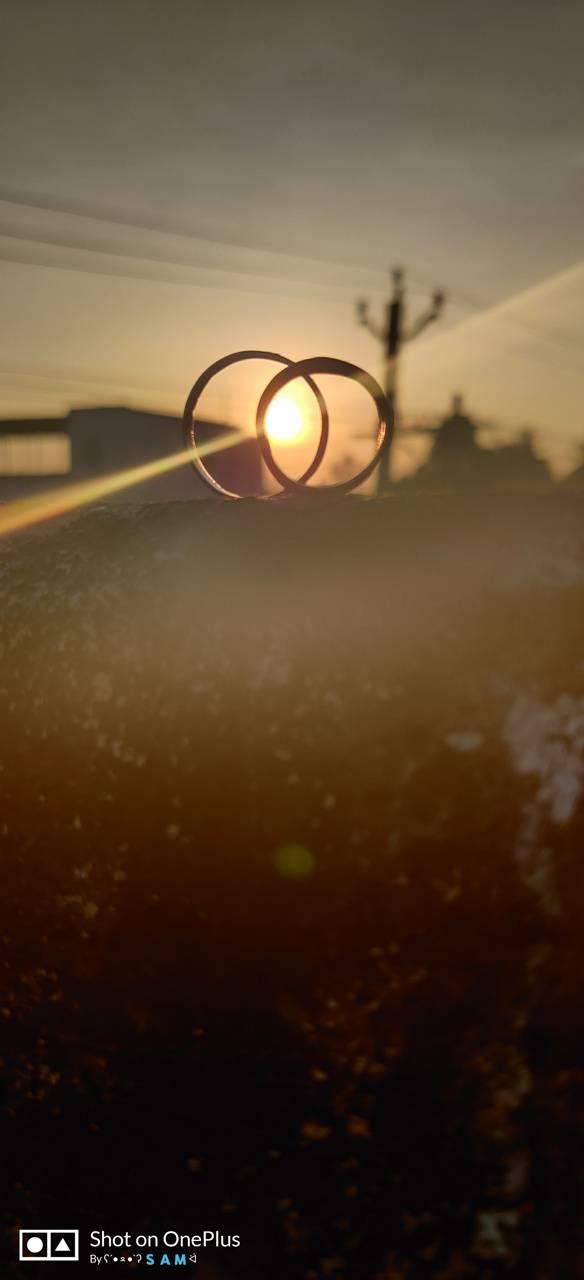 Love in sun
