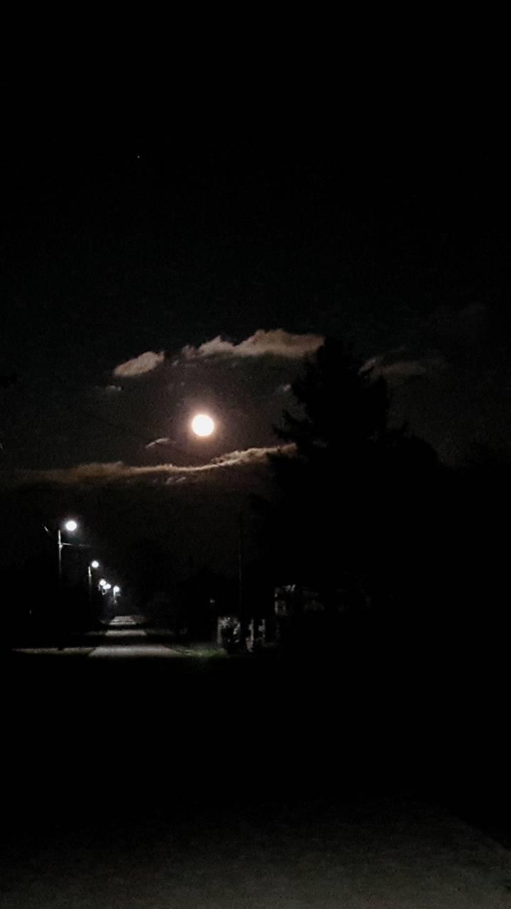 Villager Night