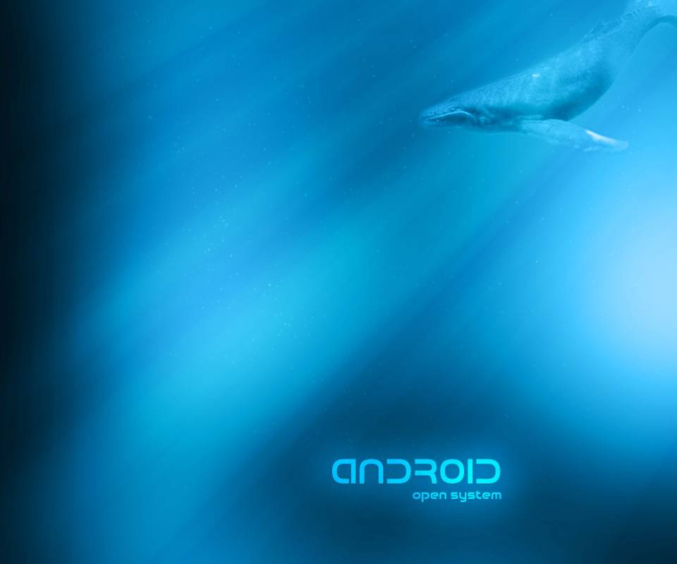 Android Whale