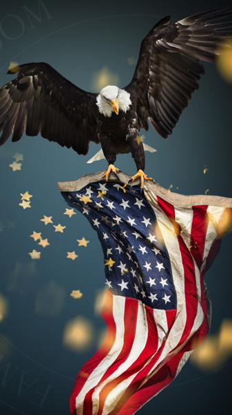 America in 1 picture