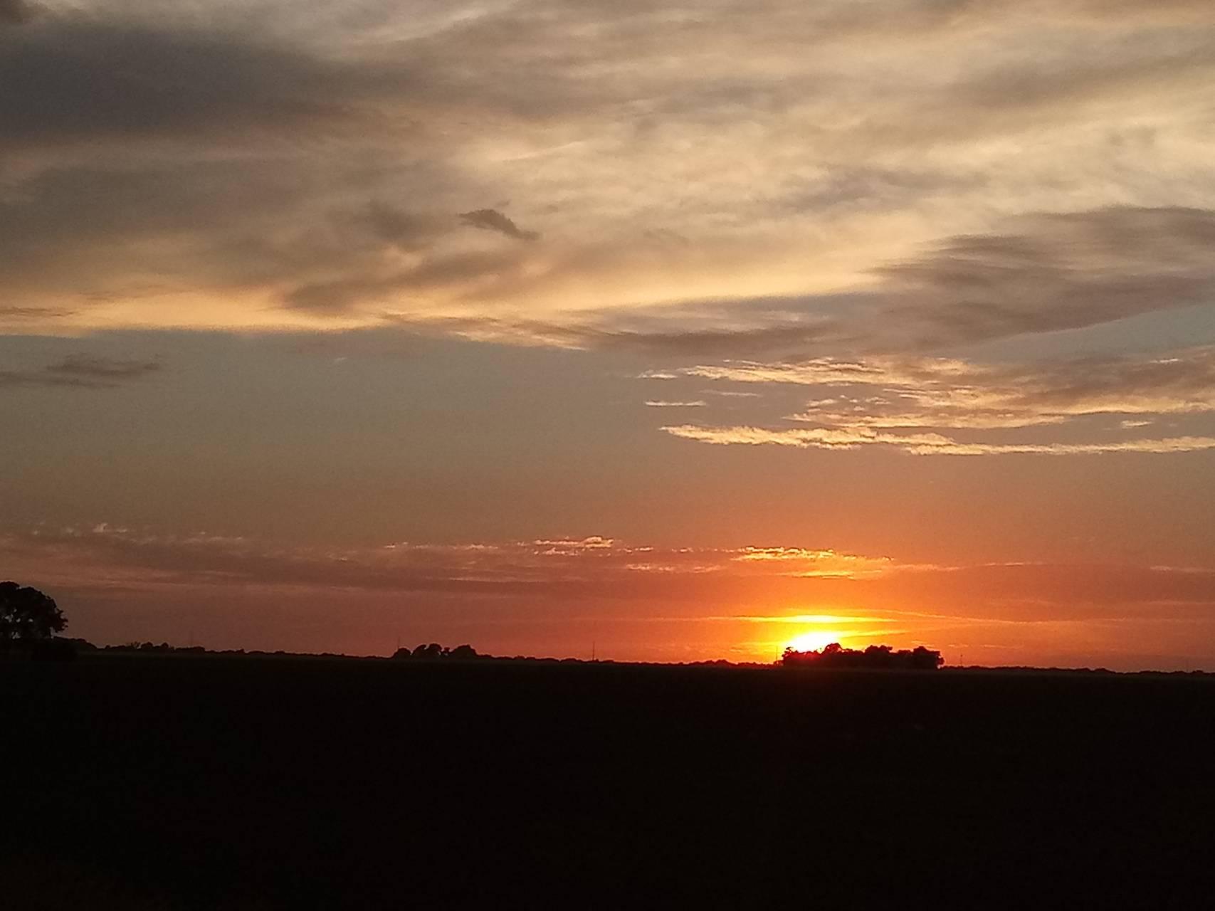 Kansas sun