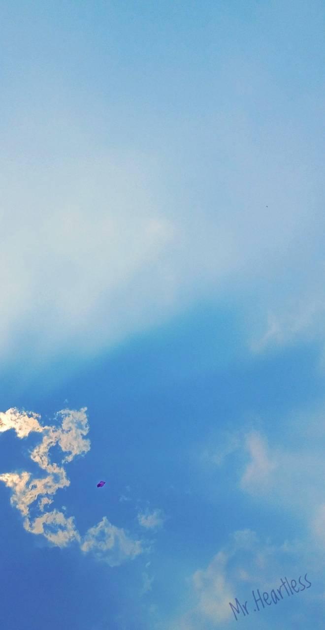 Sky n Kite