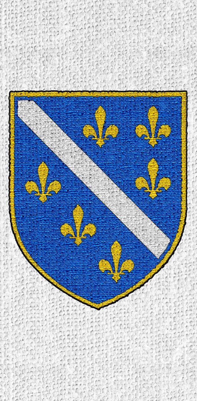 Grb Bosna Republika