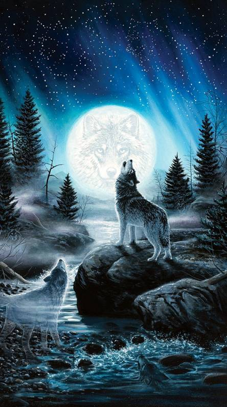 Howling Wolf Wallpapers Free By Zedge