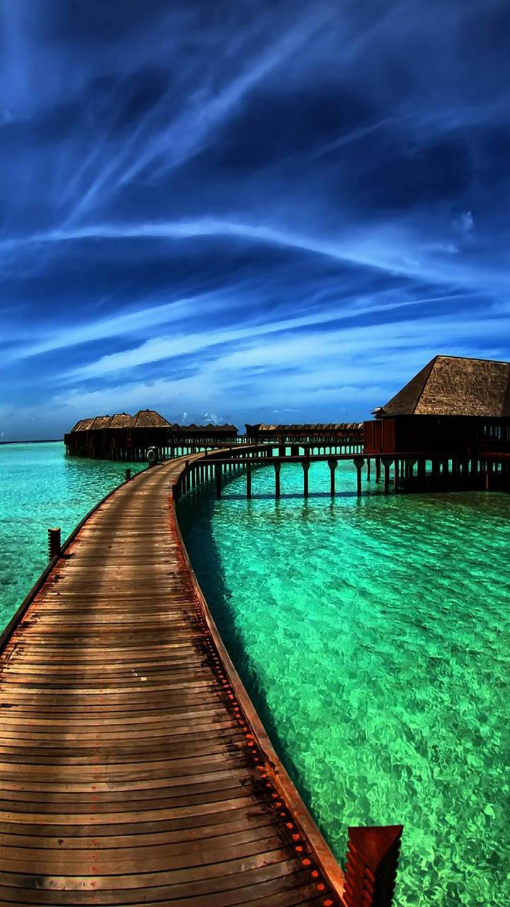 Paradise Tropical