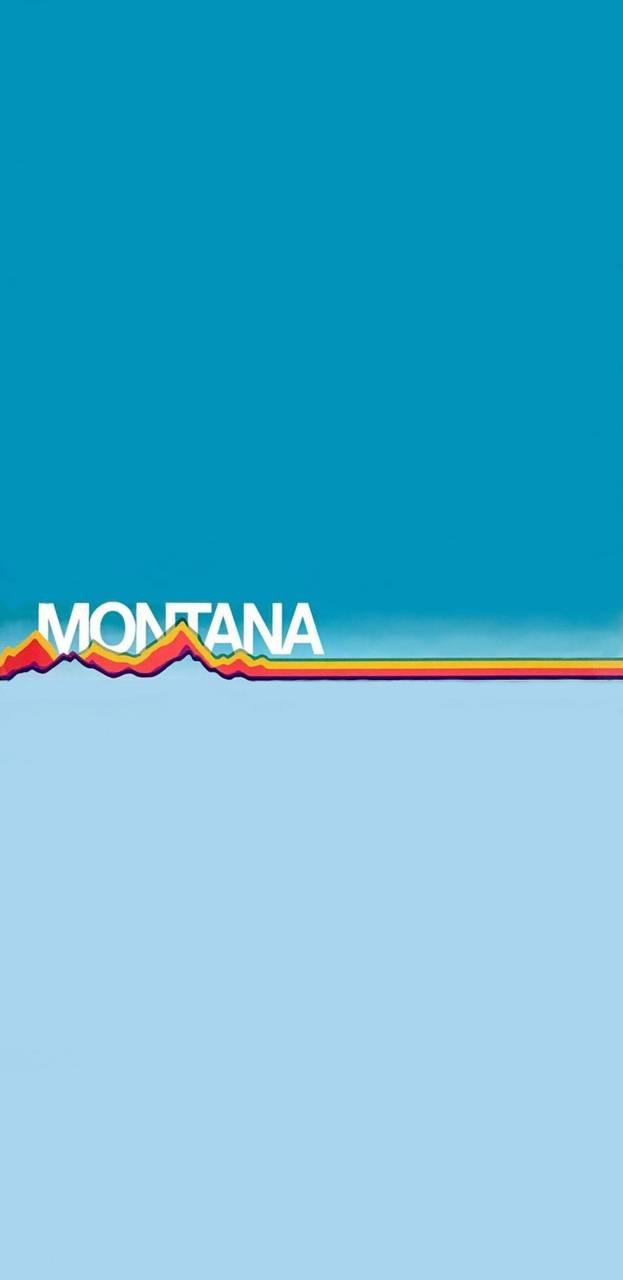 Montana 1991