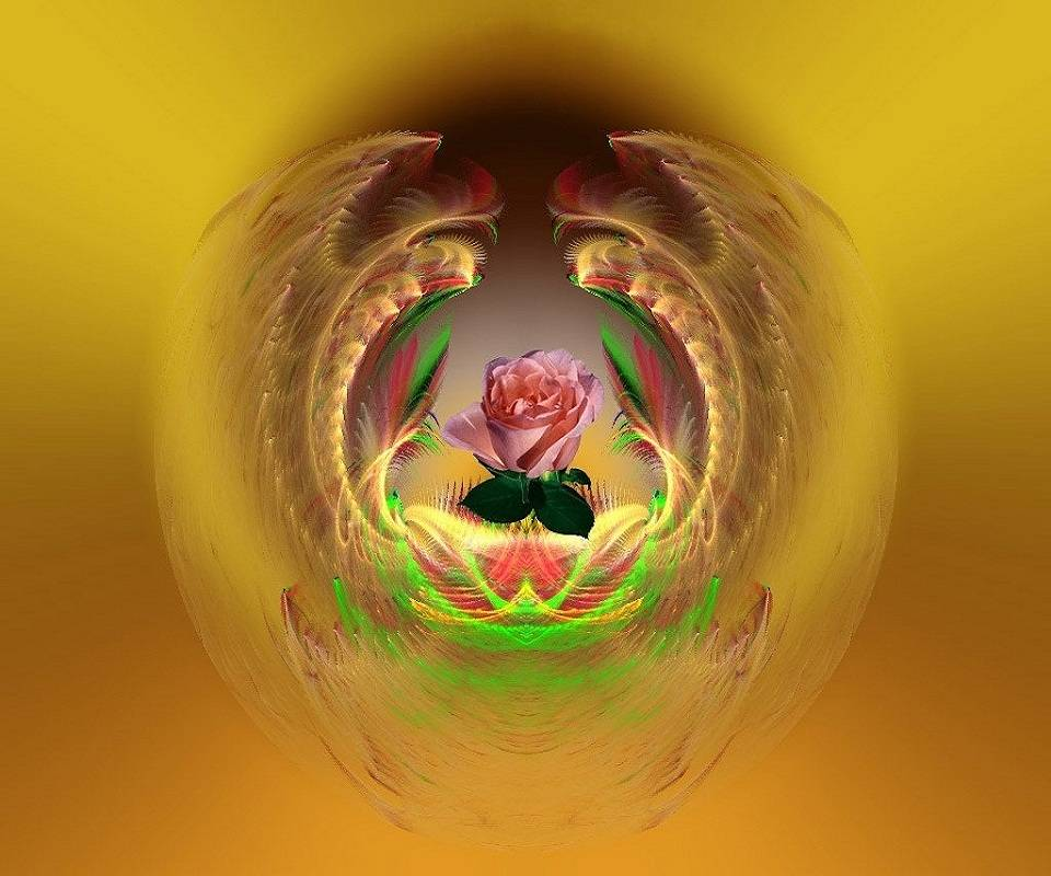Rose-abstract-v739